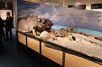 大刀洗平和記念館・新館には詳しいパネル展示が並ぶ