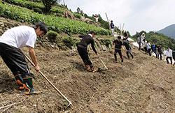 平成30年3月9日に世界農業遺産の認定を受けた「にし阿波」の傾斜地農耕を体験
